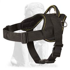 Highest quality Mastiff harness