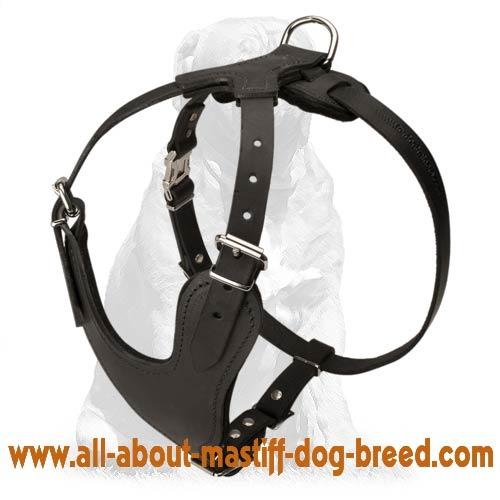 Adjustablу leather dog harness