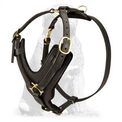 Durable Leather Dog Harness for Mastiff