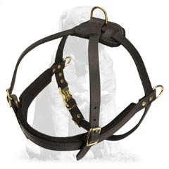 Pulling Leather Mastiff Harness for everyday activities