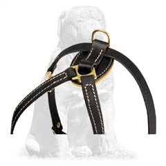 100% natural leather harness for Mastiffs