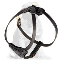 Lightweight Designer Mastiff Harness