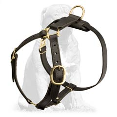 Light to Wear Leather Canine Harness for Mastiff Breed Tracking Work