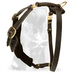 Designer Leather Dog Harness for Mastiff