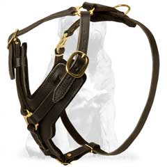 Designer Dog Harness with brass hardware