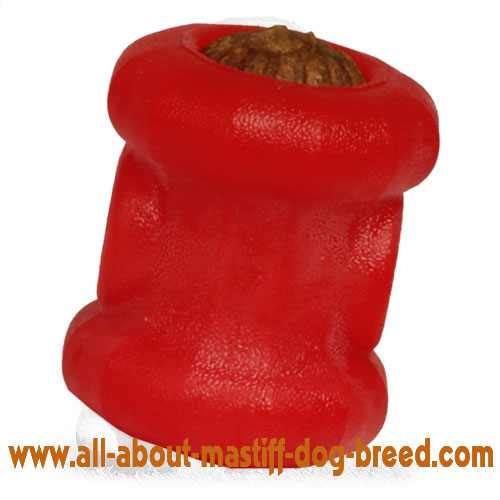 Mastiff Foam Treat Holder - Chewing Dog Toy of Medium Size