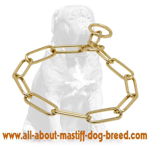 Mastiff Reliable Brass Fur Saver Collar for Dog Obedience Training 1/6 inch (4 mm)