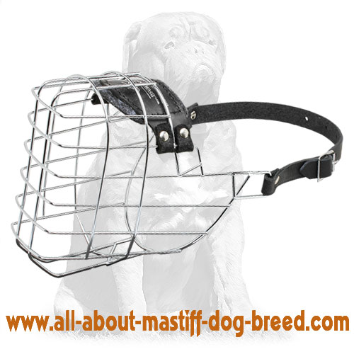 'The Silencer' Best Comfort Mastiff Wire Basket Dog Muzzle