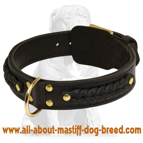 Gorgeous Wide 2 Ply Leather Dog Collar - Mastiff dog collar