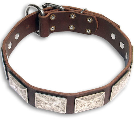 Mastiff Custom Brown collar 21''/21 inch dog collar - C83