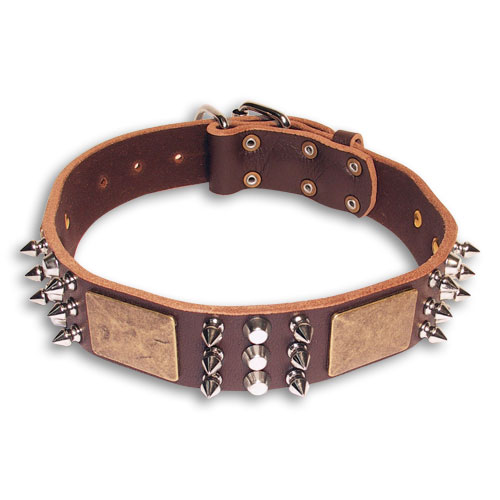 Leather Spiked Brown collar 25'' for Mastiff /25 inch dog collar - C86