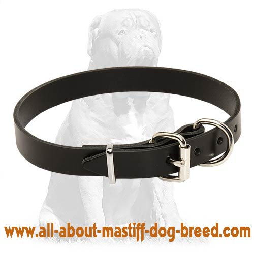 Simple stylish leather collar