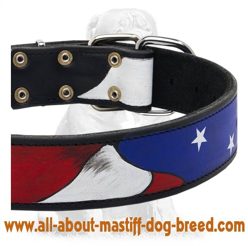 Eye-catching American Pride multifunctional collar