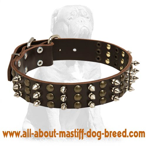 Handcrafted Mastiff Leather Collar with Luxurious Decorations