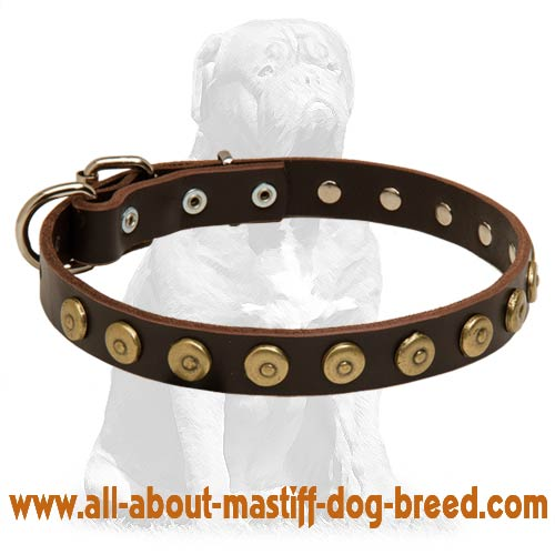 Mastiff Studded Leather Dog Collar with Doted Circles