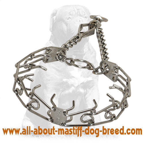 Mastiff pinch dog collar with swivel and small quick release snap hook 1/6 inch (3.9 mm) - steel chrome plated