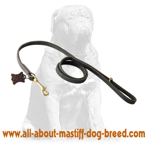 Leather dog leash equipped with brass snap hook