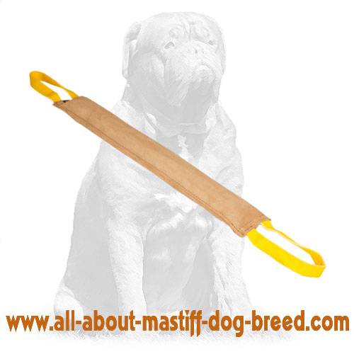Mastiff Large Leather Bite Tug for Dog Training