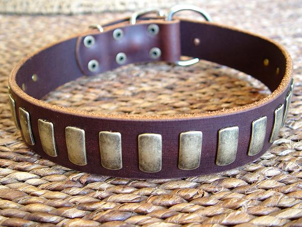english mastiff collars handcrafted leather dog collar u0026amp plates dog collar 600x450