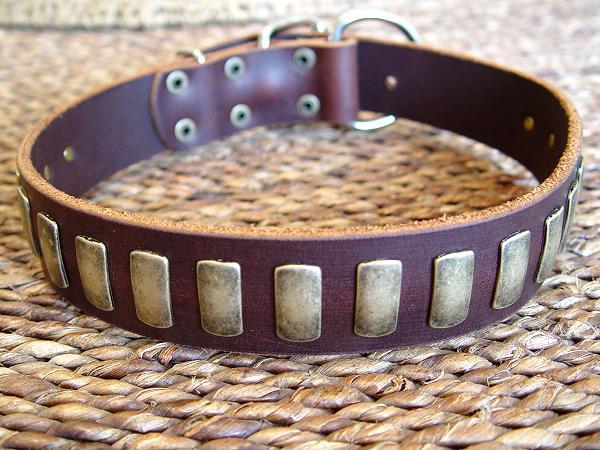 english mastiff collars handcrafted leather dog collar u0026amp plates dog collars 600x450