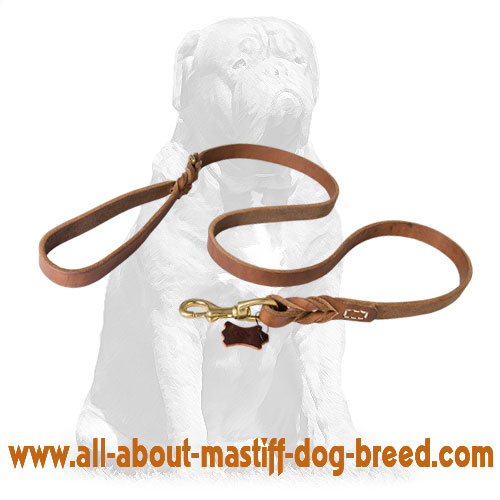 Braided leather dog leash with comfy handle