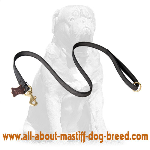 Adjustable nylon dog leash
