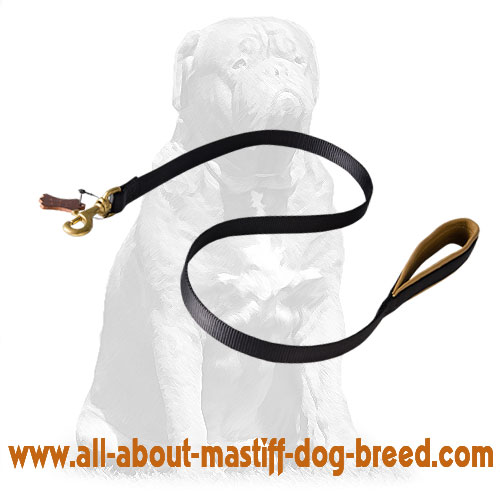 Adjustable nylon leash with brass snap hook