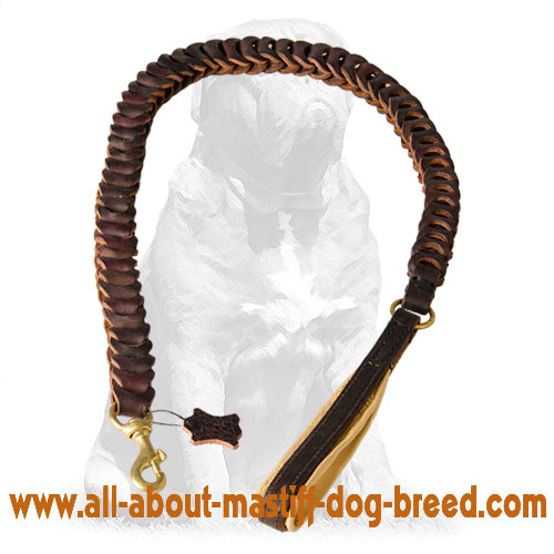 Flexible braided leather dog leash