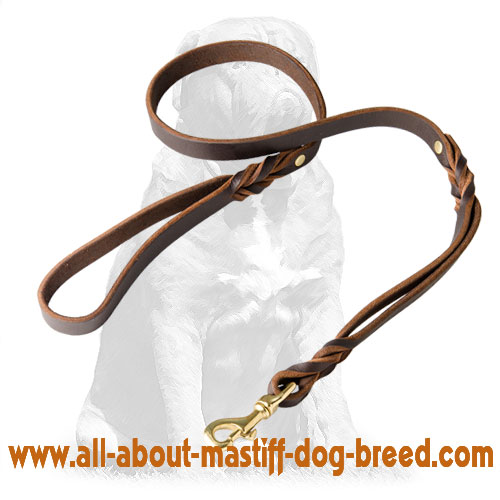Walking leather dog leash with sturdy hardware