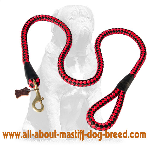 Long-servicing nylon dog leash