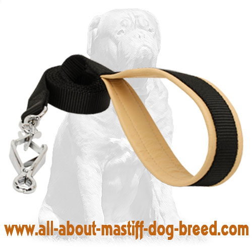 Tear-proof  2-ply nylon dog leash