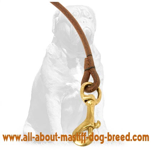Round leather dog leash with sturdy hardware
