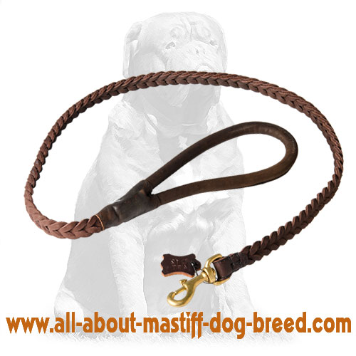 Adjustable braided leather dog leash