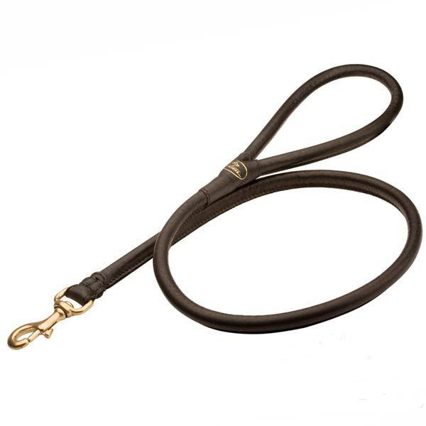 Stitched rolled leather dog leash