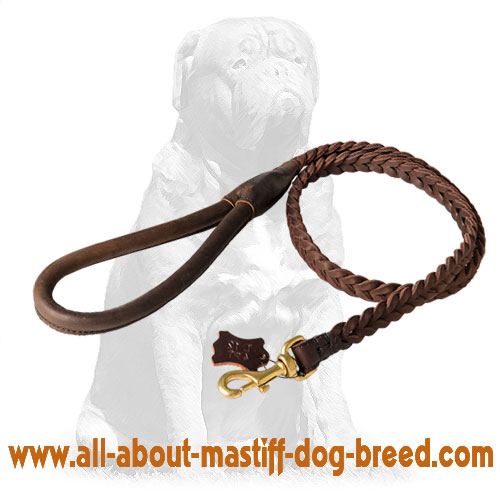 Walking leather dog leash with handle