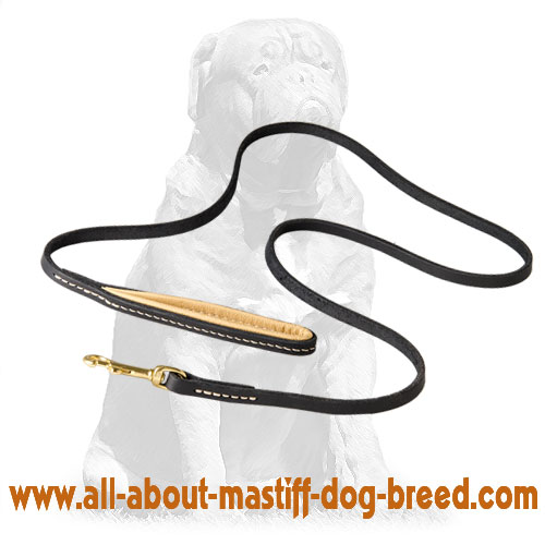 Stitched leather dog leash with sturdy hardware