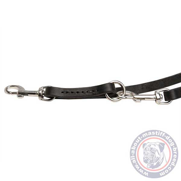 Leather dog leash with stainless steel fittings