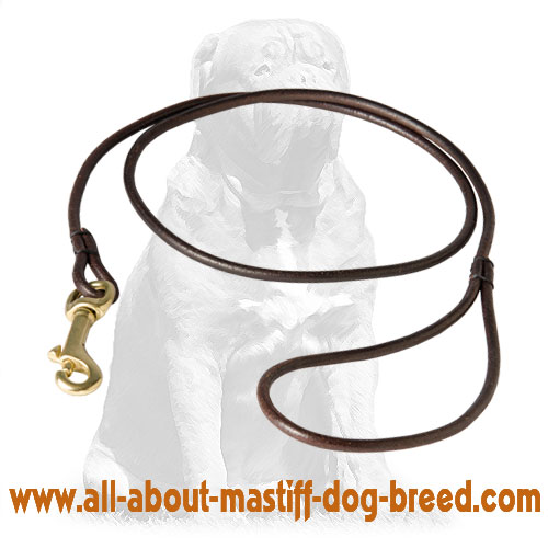 Multifunctional leather dog leash with secure snap hook