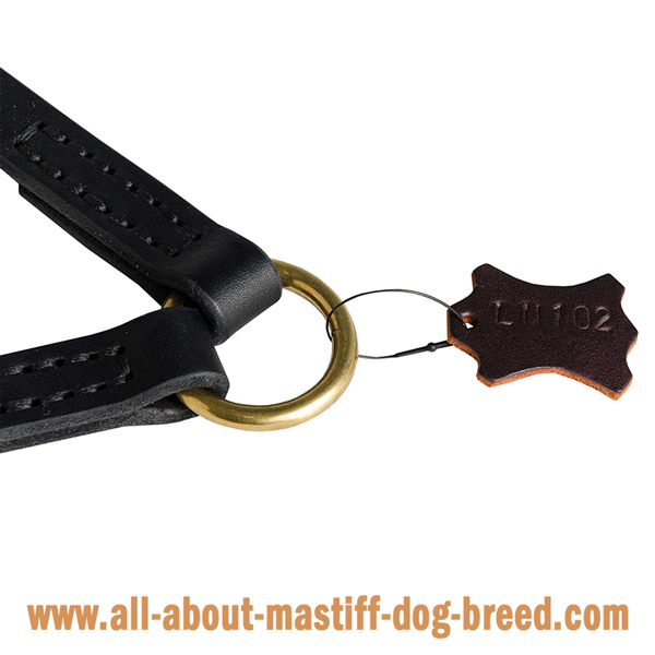 Mastiff Dog Coupler with Massive O-Ring for Leash  Attachment