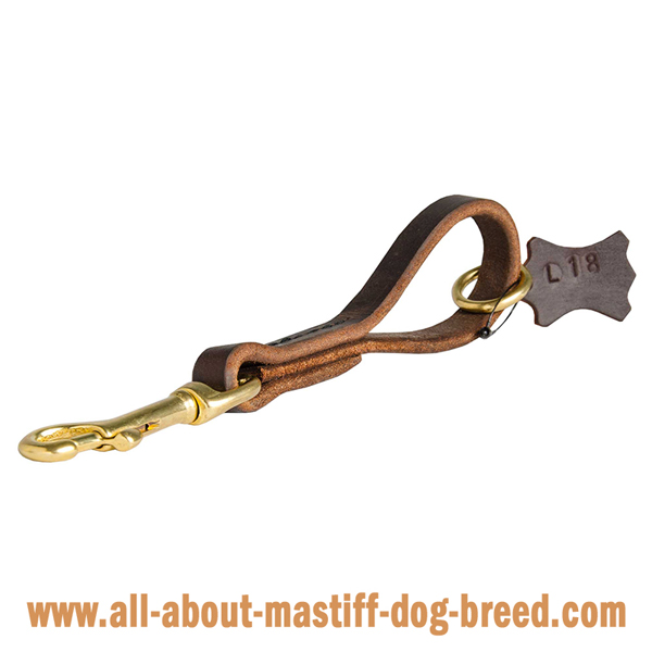 Stitched high quality leather Mastiff lead