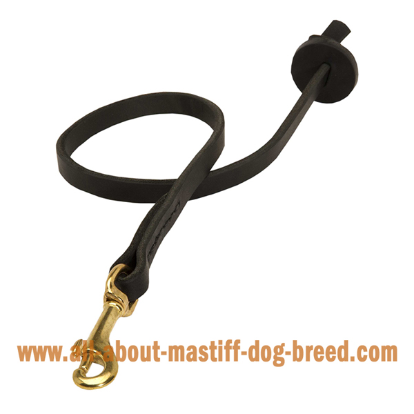 Custom leather Mastiff lead with rustproof snap hook