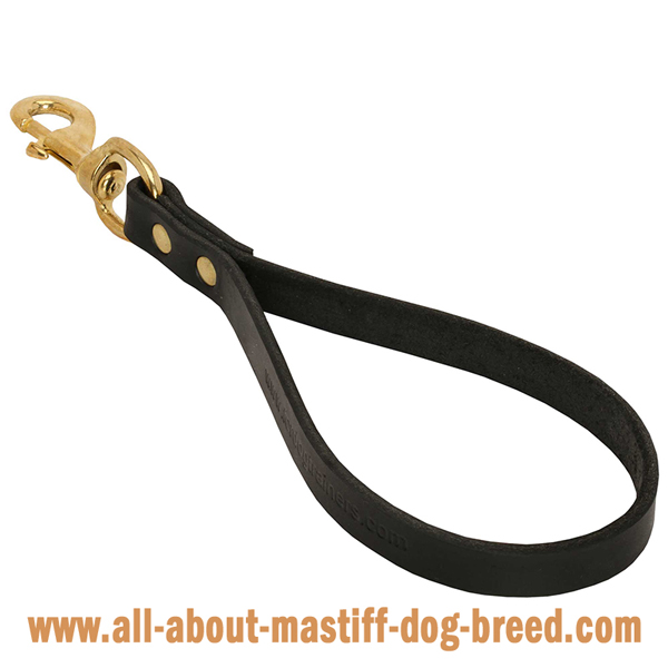 Adjustable leather Mastiff leash