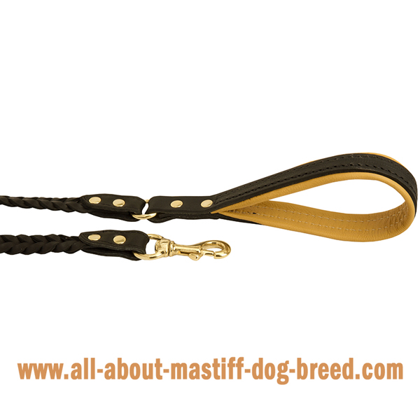 Mastiff leather leash with brass snap hook