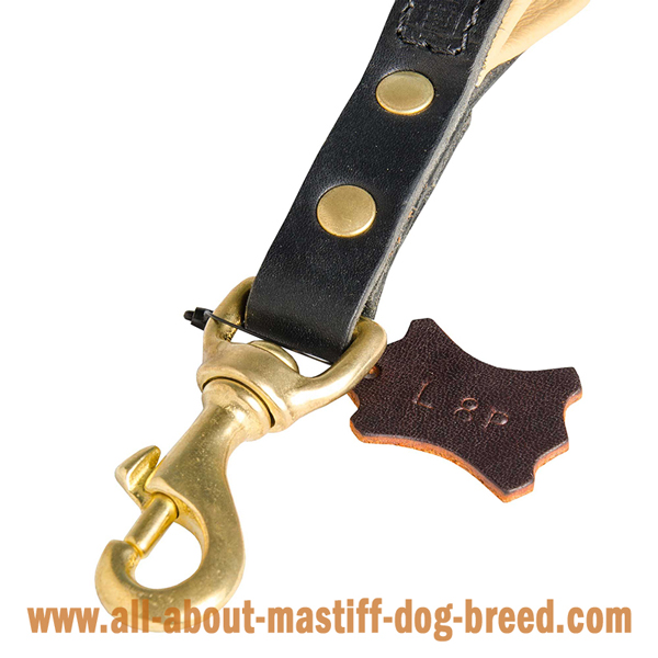Mastiff leather leash with sturdy snap hook