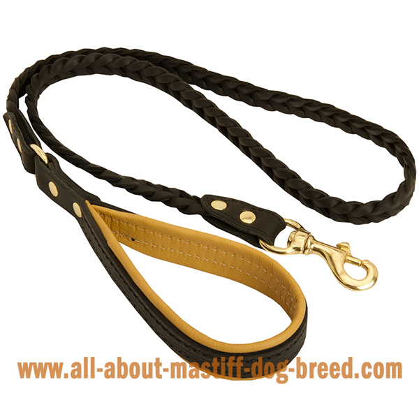 Reliable Mastiff leather leash with brass snap hook
