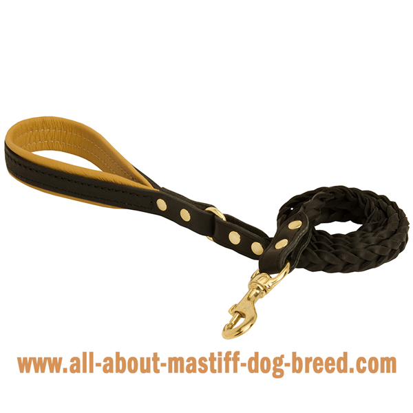 Leather Mastiff leash with padded handle