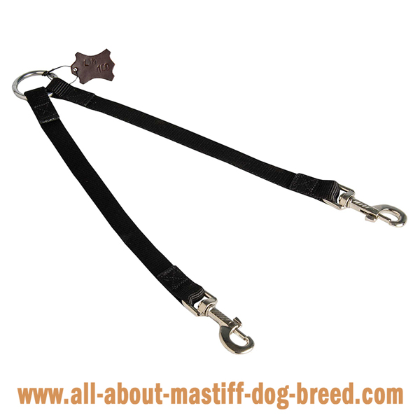 Mastiff leash with nickel plated fittings