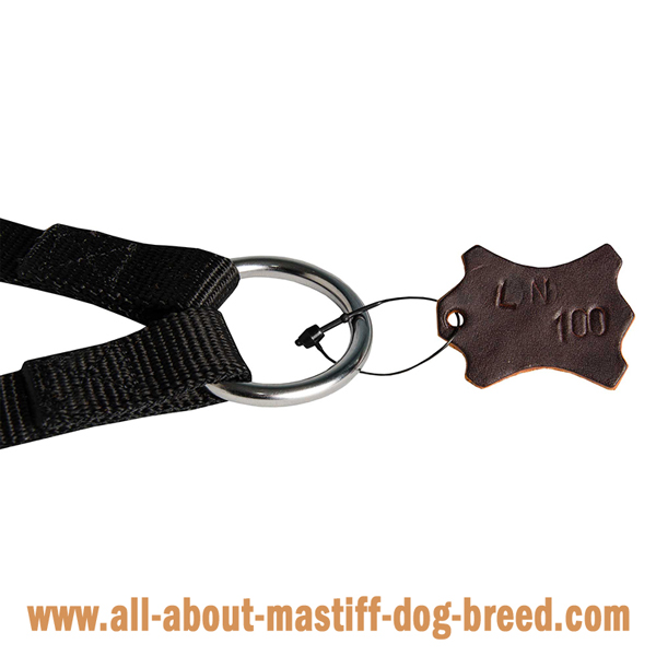 Stitched Mastiff leash with rust and corrosion resistant fittings