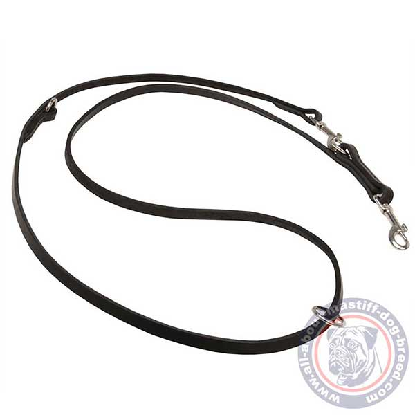 Lightweight leather dog leash