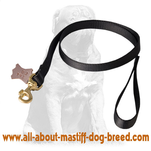 Nylon leash with sturdy snap hook